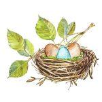 Гнездо на дереве — красивые рисунки для детей