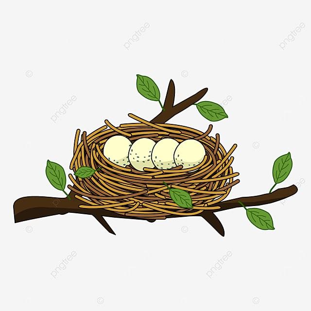 Гнездо на дереве - красивые рисунки для детей (24)
