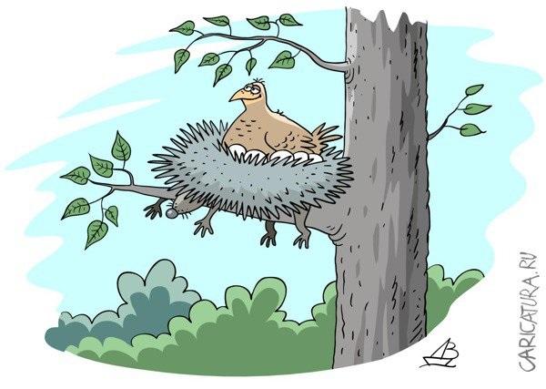 Гнездо на дереве - красивые рисунки для детей (26)