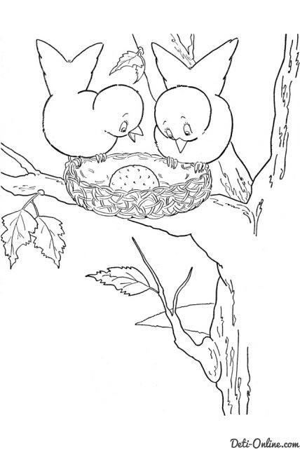 Гнездо на дереве - красивые рисунки для детей (4)