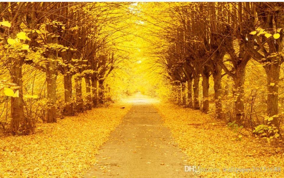 Лучшие фото осень золотая (18)