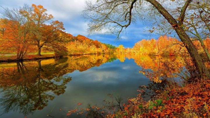 Лучшие фото осень золотая (25)