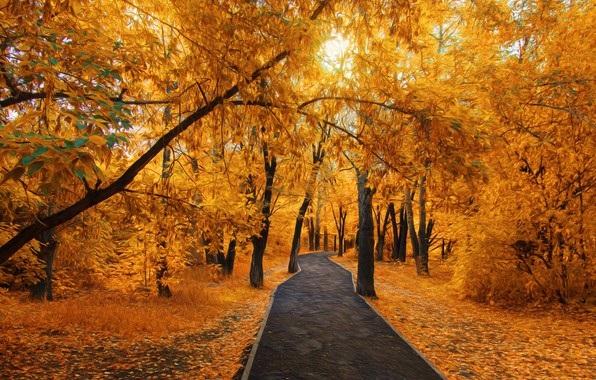 Лучшие фото осень золотая (3)