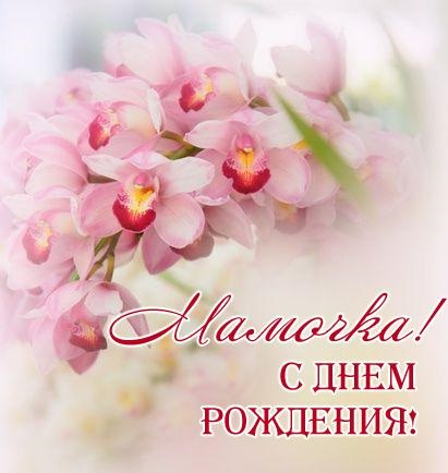 Орхидеи с днем рождения фото и открытки (1)