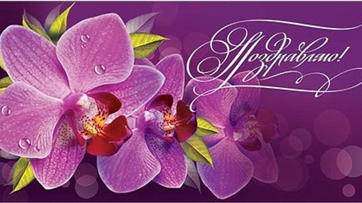 Орхидеи с днем рождения фото и открытки (10)