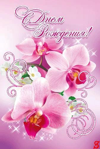 Орхидеи с днем рождения фото и открытки (15)