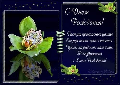 Орхидеи с днем рождения фото и открытки (20)