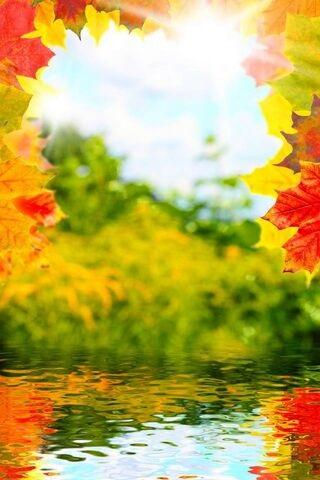 Осенние пейзажи 2021 года - большая фото подборка (18)
