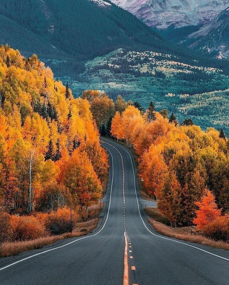 Осенние пейзажи 2021 года - большая фото подборка (22)