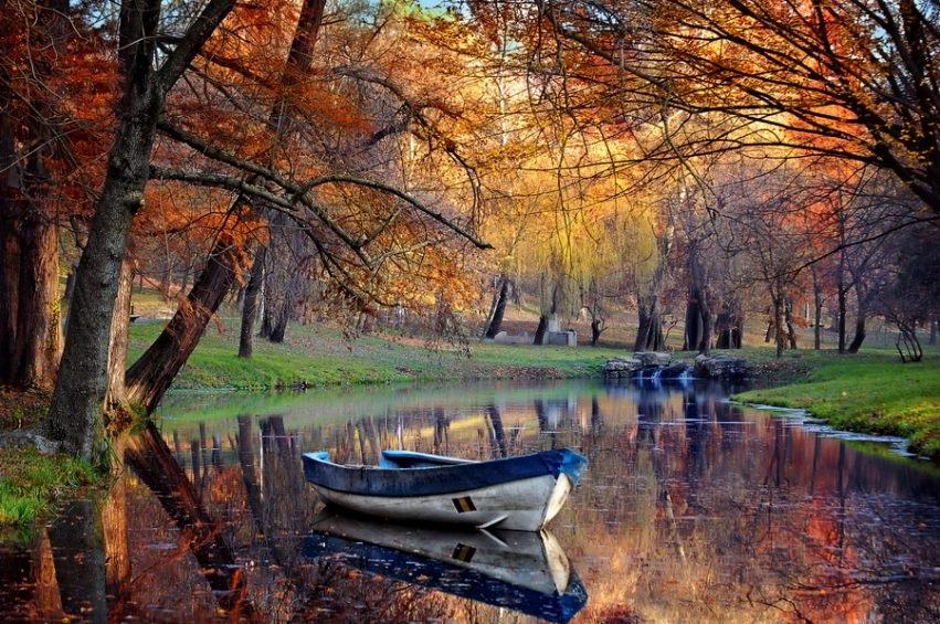 Осенние пейзажи 2021 года - большая фото подборка (24)