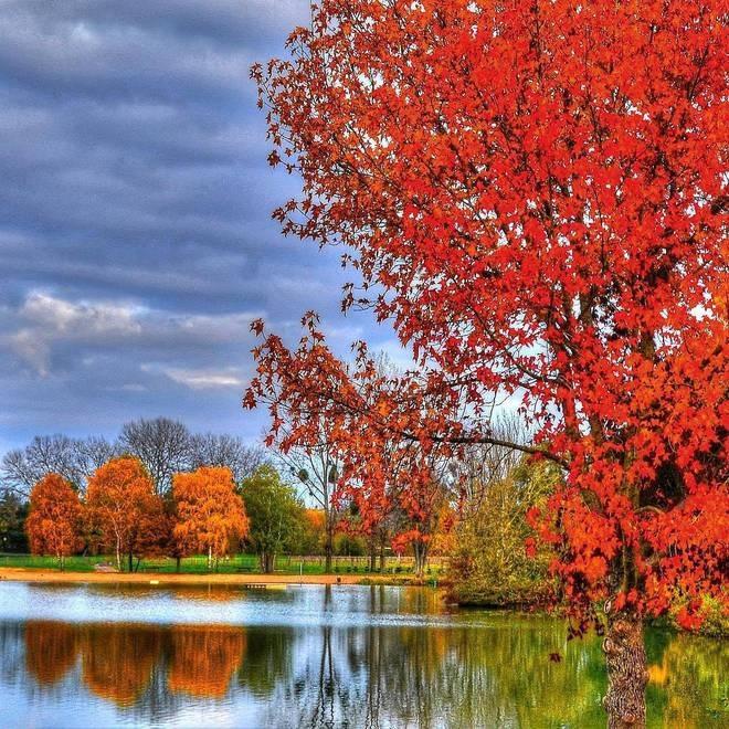 Осенние пейзажи 2021 года - большая фото подборка (25)