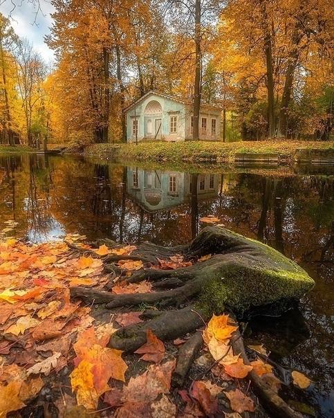 Осенние пейзажи 2021 года - большая фото подборка (29)