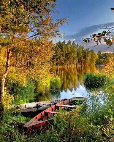 Осенние пейзажи 2021 года - большая фото подборка (9)