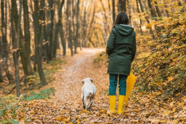 Девушка в лесу спиной фото и картинки - подборка (11)