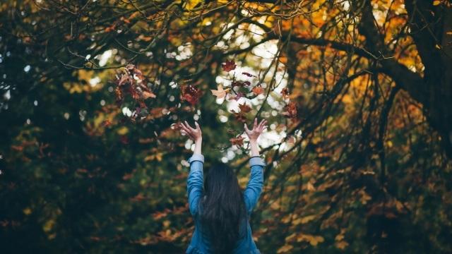 Девушка в лесу спиной фото и картинки - подборка (15)