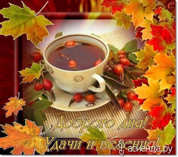 Доброе утро октября осенью - самые милые открытки (1)