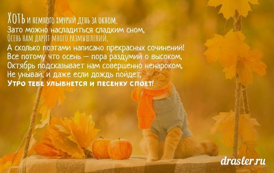 Доброе утро октября осенью - самые милые открытки (18)
