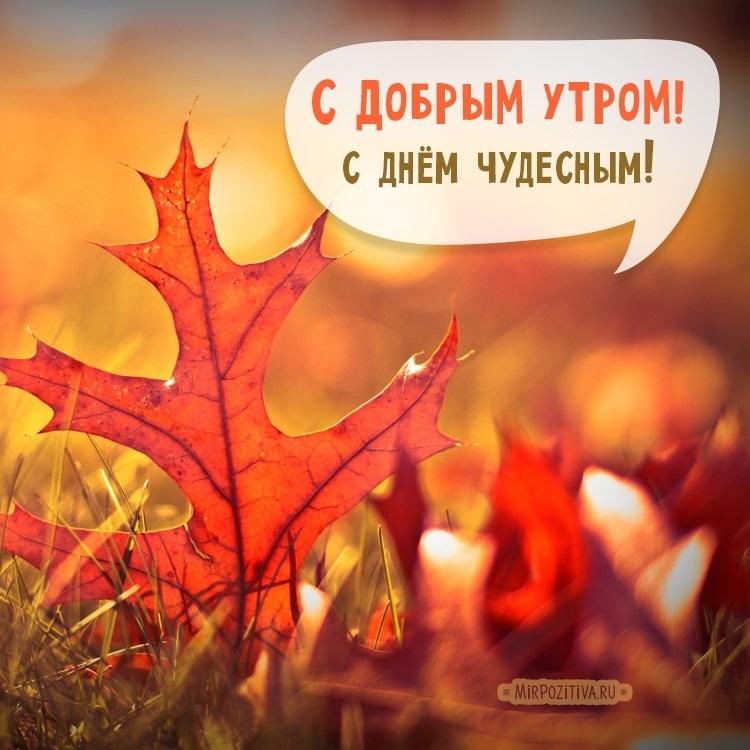 Доброе утро октября осенью - самые милые открытки (21)