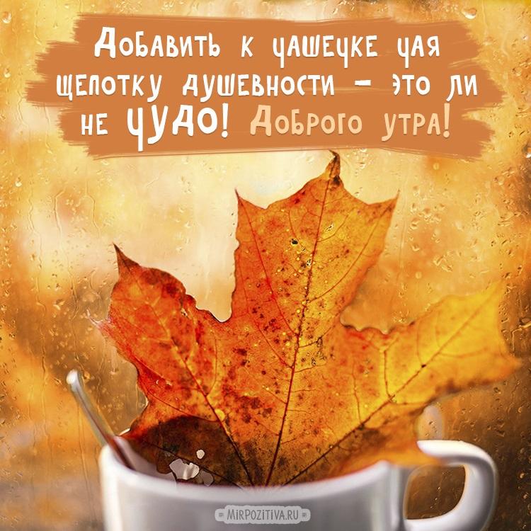 Доброе утро октября осенью - самые милые открытки (7)