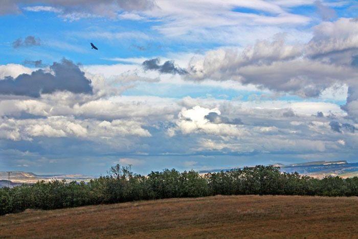 Картинки осеннего неба с облаками для детей (14)