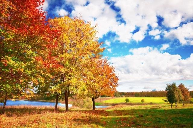 Картинки осеннего неба с облаками для детей (3)