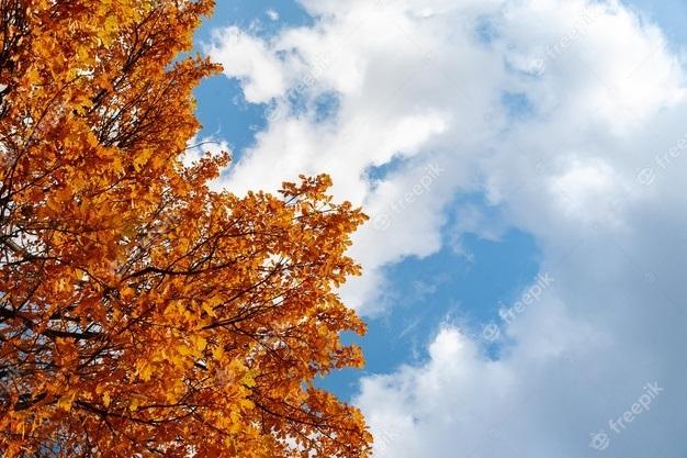 Картинки осеннего неба с облаками для детей (4)