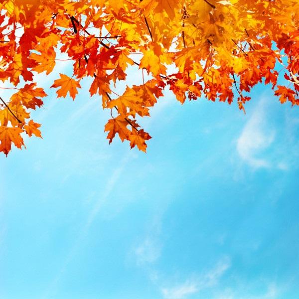 Картинки осеннего неба с облаками для детей (6)
