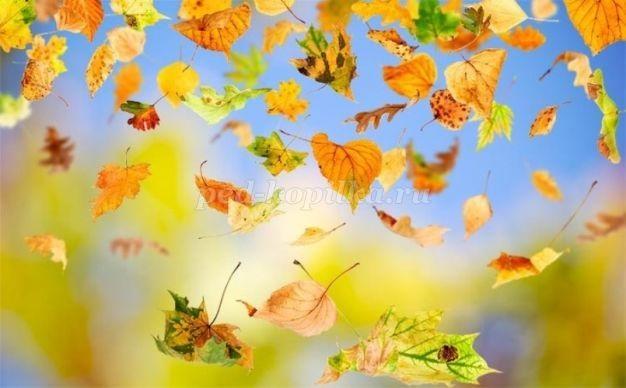 Красивые картинки осенний листопад для детей (15)