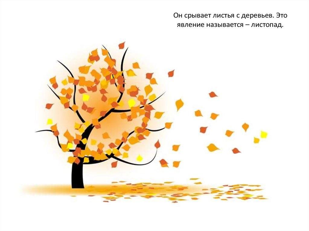 Красивые картинки осенний листопад для детей (5)